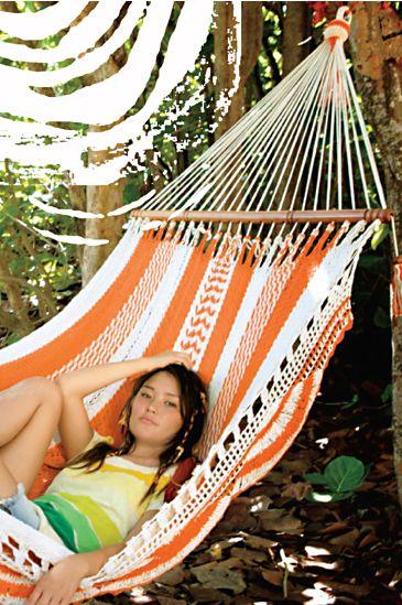 Hammock :  hammock