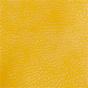 Mustard / Natural