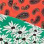 Green daisy combo