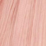 Pink Camel
