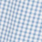 Blue gingham