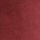 珍稀酒红色