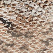 Brown / Black Snake