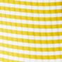 Mustard Stripe Rib