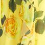金盏花日出玫瑰