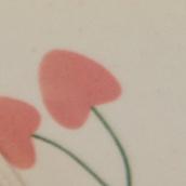 Ivory Pink Cherry