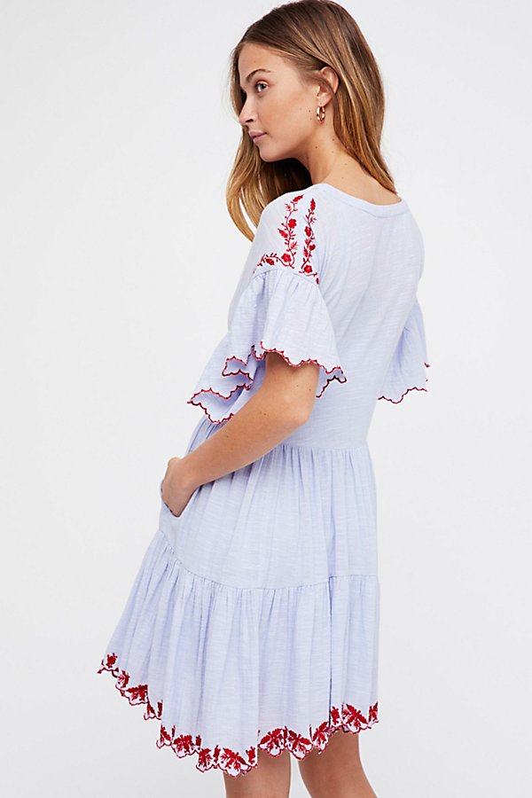Slide View 2: Santiago Embroidered Mini Dress