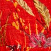 红色花卉图案