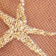 Black / Gold Star