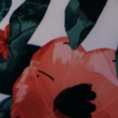 Gelato Bloom