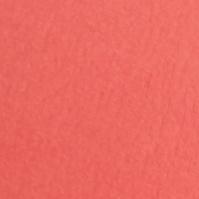 珊瑚康乃馨色