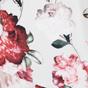 Blushing Bloom Print