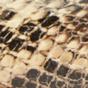 棕褐色蛇纹