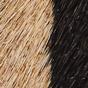 棕褐色斑马纹