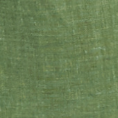 Plain Moss Green