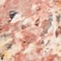 红色豹纹 / 黄铜
