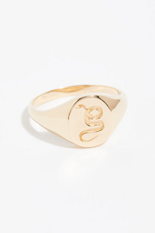 14k Animal Spirit Signet Ring by Free People