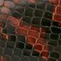 棕色 / 黑色蛇皮