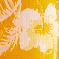 Hawaii Honey Combo